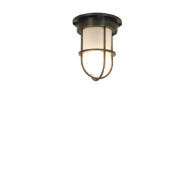 Davey Lighting MINIATURE DP7203/BR/M/FR/WE plafon sufitowy 1x15W/SBC