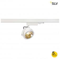 Spotline--153581-SPL153581